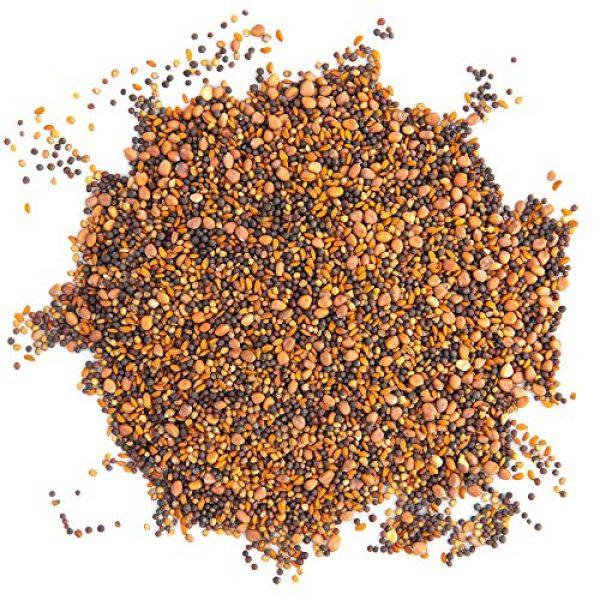 Rainbow Heirloom Seed Co. Heirloom Seed 3 Super Spicy Greens Microgreen Seed Mix | Contains Garden Cress Seeds, Radish, Mustard, Turnip & Arugula Microgreen Seeds | Bulk 1 LB Resealable Bag | Non GMO Heirloom Seeds | Rainbow Heirloom Seed Co.