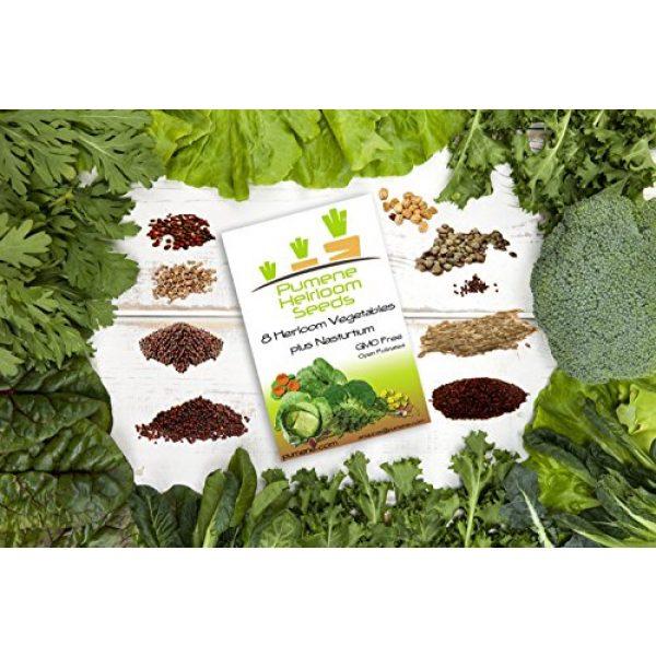 Pumene Heirloom Seeds Organic Seed 3 HEIRLOOM VEGETABLE SEEDS AMERICAN GROWN Variety Non GMO Vegetables Seeds. Super Germination Easy to Grow, Open Pollinated, Non Hybrid Vegetable Heirloomseeds for Planting in Organic Vegetable Garden