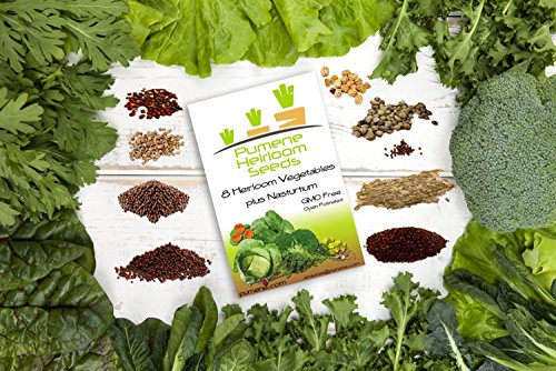 Non Hybrid Vegetable Heirloomseeds for Planting in Organic Vegetable Garden