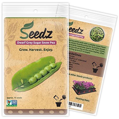 Seedz  1 Organic Pea Seeds