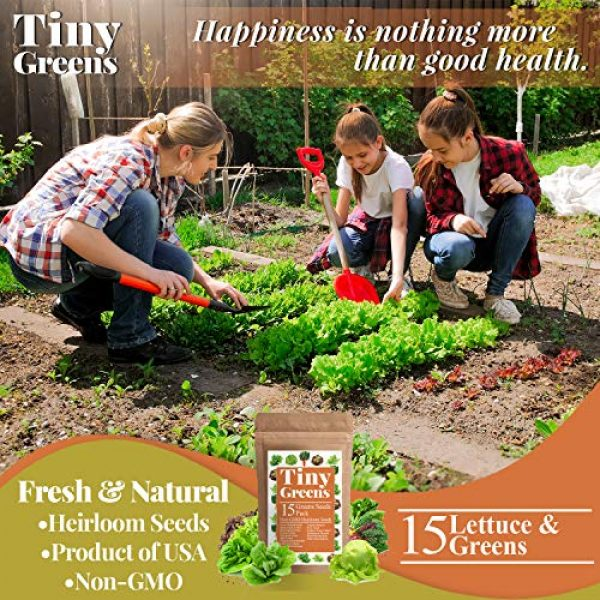 Tiny Greens Heirloom Seed 4 15 Heirloom Lettuce & Leafy Vegetable Seeds | 4000+ Seeds | Non GMO Bulk Lettuce Seeds for Planting - Kale, Spinach, Arugula, Oak, Romaine, Iceberg, Butter | Hydroponic, Home Garden, Indoor Outdoor