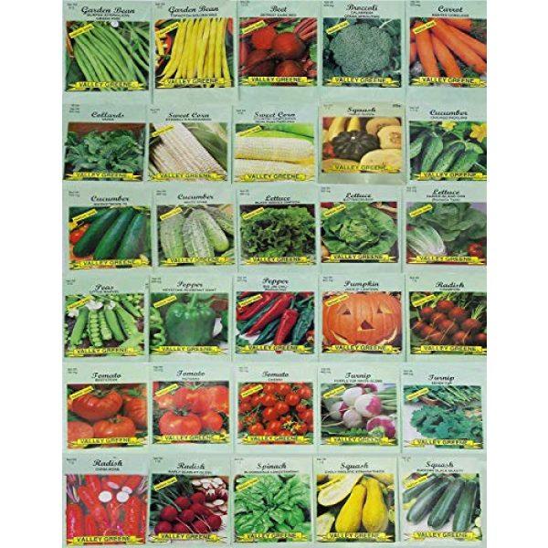 Black Duck Brand Heirloom Seed 2 Set of 35 Assorted Vegetable & Herb Seeds 35 Varieties Create a Deluxe Garden All Seeds are Heirloom, 100% Non-GMO! by Black Duck Brand 35 Different Varieties