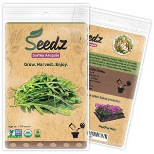 Seedz Organic Seed 1 Organic ARUGULA Seeds (APPR. 1,100) Surrey Arugula - Heirloom Vegetable Seeds - Certified Organic, Non-GMO, Non Hybrid -USA