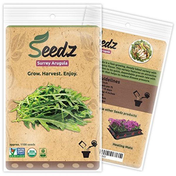 Seedz Organic Seed 1 Organic ARUGULA Seeds (APPR. 1,100) Surrey Arugula - Heirloom Vegetable Seeds - Certified Organic, Non-GMO, Non Hybrid -USA