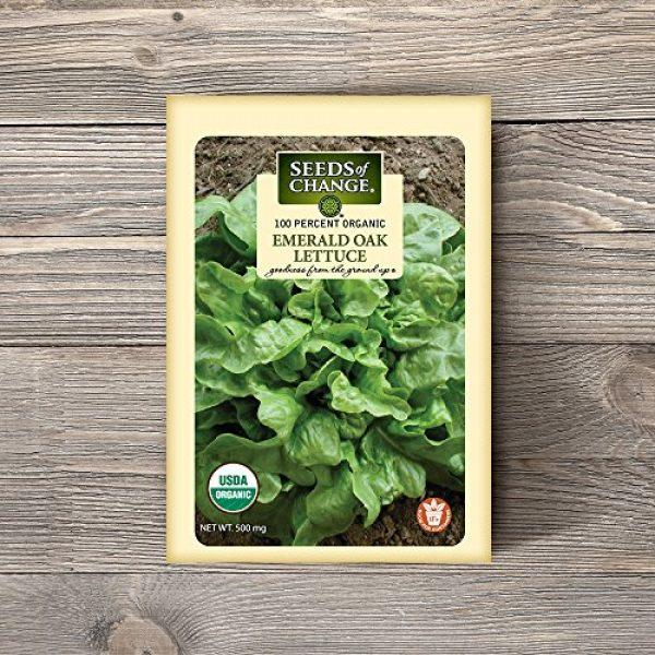 SEEDS OF CHANGE Organic Seed 2 Seeds of Change 04994 Organic Emerald Oak Lettuce