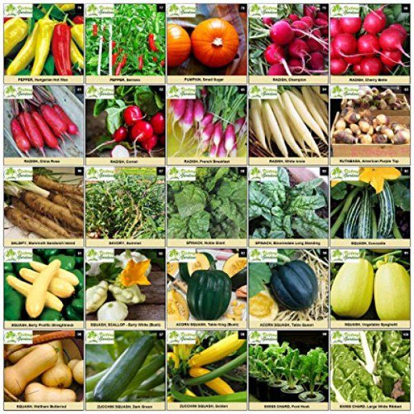 VictoryGardens Heirloom Seed 6 125 Variety XP Heirloom Seed Vault - Premium 100% Non GMO, Non Hybrid, Heirloom Seeds - Packaged for Maximum Shelf Life Storage - Heirloom Vegetable, Herb, and Fruit Seeds.!