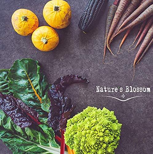 Nature's Blossom Organic Seed 5 Nature's Blossom Exotic Vegetable Garden Kit - Easily Grow 4 Funky Vegetables from Seeds. Educational STEM Gardening Gift Set for Kids, Men and Women. Full Beginners Starter Kit.