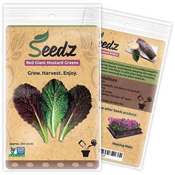 Seedz Organic Seed 1 Organic Mustard Seeds (APPR. 550) Red Giant Mustard Greens - Heirloom Vegetable Seeds - Certified Organic, Non-GMO, Non Hybrid - USA