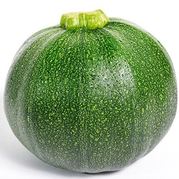 Kuting Organic Seed 1 Small Pumpkin Seeds 25+ Green Striped Cushaw Squash Melon Garden Vegetable Organic Chinese Fresh Herb Climbing Seeds for Planting Outdoor for Cooking Dish Soup Easy to Grown (Small Pumpkin Seeds)
