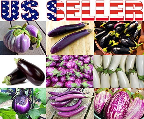 Harley Seeds Heirloom Seed 1 Please Read! This is A Mix!!! 30+ Eggplant Mix Seeds 11 Varieties Heirloom Non-GMO Aubergine, Asian, European, Italian, Profilic, Super Delicious, from USA