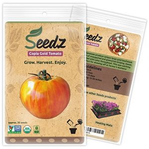 Seedz Organic Seed 1 Organic Tomato Seeds, APPR. 30, Copia Gold Beefsteak Tomato, Heirloom Vegetable Seeds, Certified Organic, Non GMO, Non Hybrid, USA