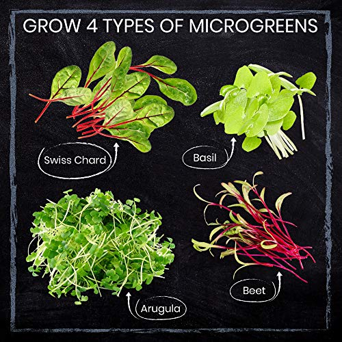 Nature's Blossom  4 Nature's Blossom Microgreen Vegetables Sprouting Kit. Beginner Gardeners Seed Starter Kit to Grow 4 Types of Vegetable Sprouts Indoors. Complete DIY Home Gardening Set