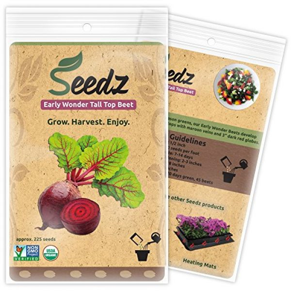 Seedz Organic Seed 1 Organic Beet Seeds, APPR. 225, Early Wonder Tall Top Beet, Heirloom Vegetable Seeds, Certified Organic, Non GMO, Non Hybrid, USA