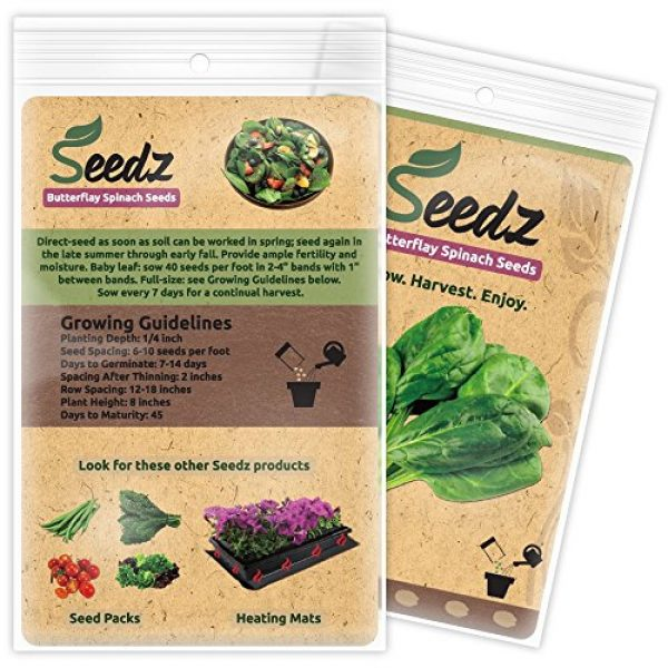 Seedz Organic Seed 3 Organic Spinach Seeds, APPR. 225, Butterflay Spinach, Heirloom Vegetable Seeds, Certified Organic, Non GMO, Non Hybrid, USA