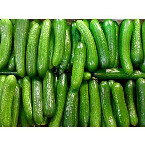 Harley Seeds  1 30+ Persian Beit Alpha (A.k.a. Lebanese) Cucumber Seeds Heirloom NON-GMO Crispy Fragrant From USA