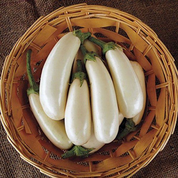 Seedz Organic Seed 2 Organic Eggplant Seeds, APPR. 30, Snowy Eggplant, Heirloom Vegetable Seeds, Certified Organic, Non GMO, Non Hybrid, USA