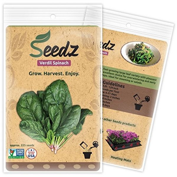 Seedz Organic Seed 1 Organic Spinach Seeds (APPR. 225) Verdil Spinach - Heirloom Vegetable Seeds - Certified Organic, Non-GMO, Non Hybrid - USA