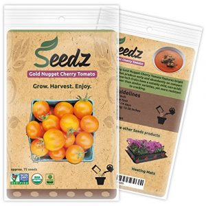Seedz Organic Seed 1 Organic Tomato Seeds, APPR. 75, Gold Nugget Cherry Tomato, Heirloom Vegetable Seeds, Certified Organic, Non GMO, Non Hybrid, USA