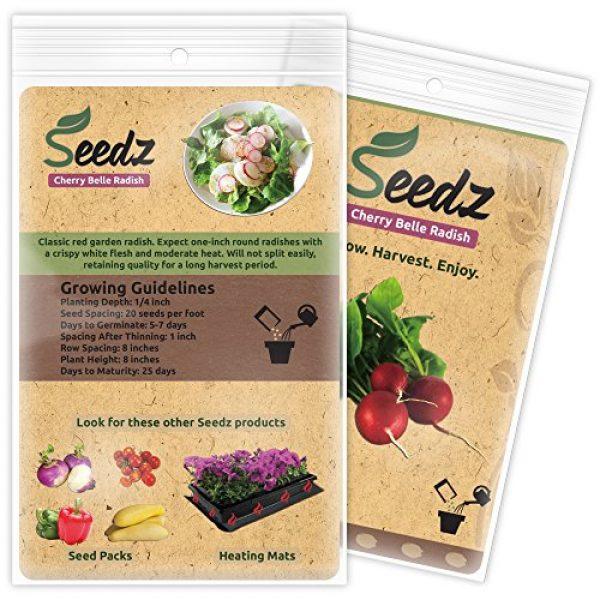 Seedz Organic Seed 3 Organic Radish Seeds, APPR. 550, Radish Planting Seeds, Heirloom Vegetable Seeds, Certified Organic, Non GMO, Non Hybrid, USA