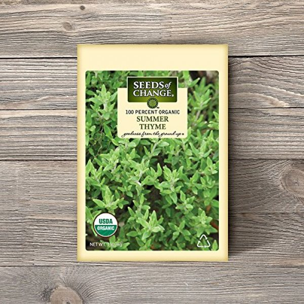 SEEDS OF CHANGE Organic Seed 2 Seeds Of Change 8093 Certified Organic Summer Thyme