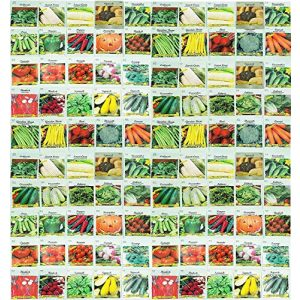 Valley Greene  1 100 Assorted Heirloom Vegetable Seeds 100% Non-GMO (100