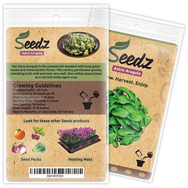 Seedz Organic Seed 3 Organic ARUGULA Seeds (APPR. 550) Astro Arugula - Heirloom Vegetable Seeds - Certified Organic, Non-GMO, Non Hybrid - USA