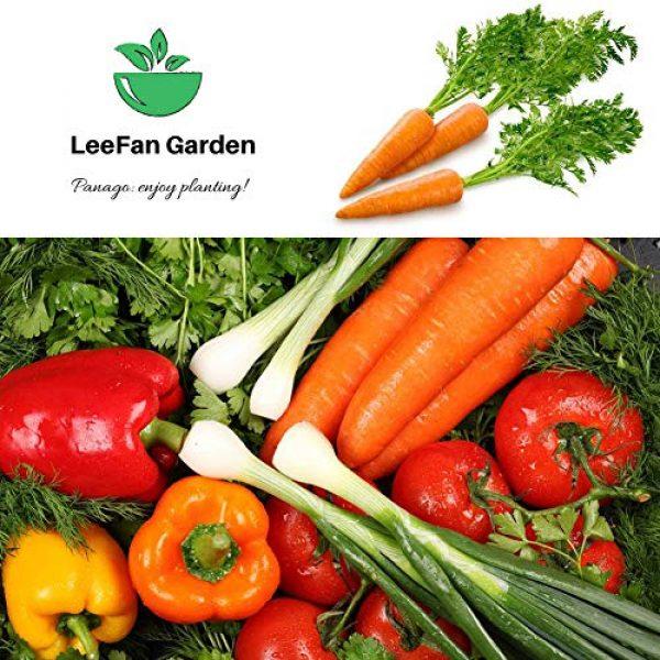 LeeFan Garden Organic Seed 5 500+ Carrot Seeds for Garden Planting, Non-GMO Organic Carrot Seeds, Cheap Widely Adaptable Seeds