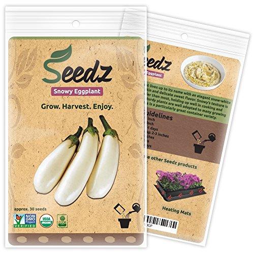 Seedz  1 Organic Eggplant Seeds