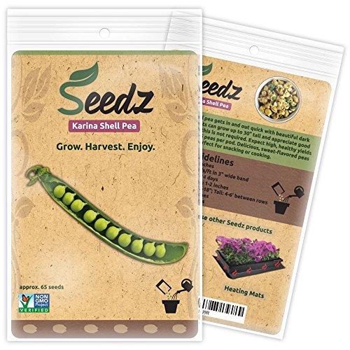 Seedz  1 Organic Pea Seeds (APPR. 65) Karina Shell Pea - Heirloom Vegetable Seeds - Certified Organic