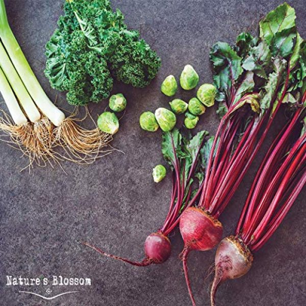 Nature's Blossom Organic Seed 5 Grow 4 of The Healthiest Vegetables from Seed - Brussel Sprouts, Kale, Beets & Leeks. Superfood Sprout Kit W/Soil, Organic Planters. Outdoor Garden Gift for Beginner Gardeners, Vegans, Vegetarians