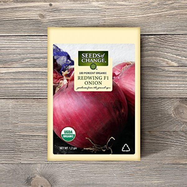 SEEDS OF CHANGE Organic Seed 2 Seeds of Change 05790 Certified Organic Seed, Redwing F1 Onion