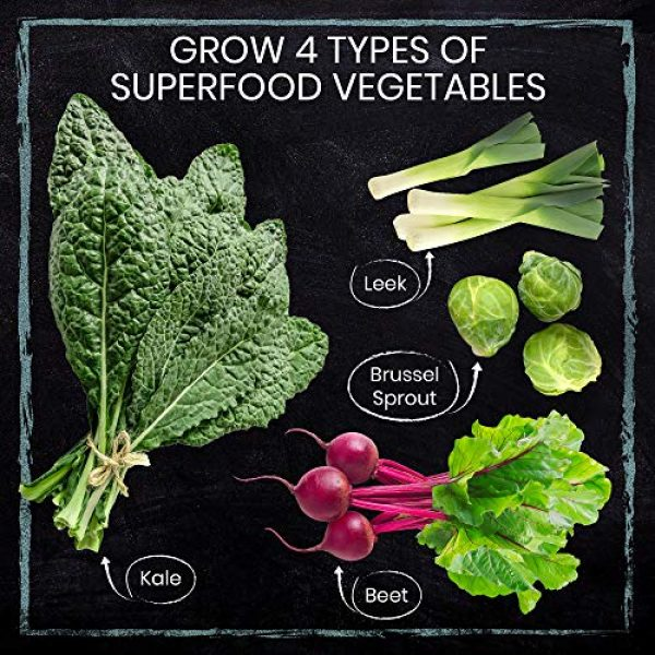 Nature's Blossom Organic Seed 4 Grow 4 of The Healthiest Vegetables from Seed - Brussel Sprouts, Kale, Beets & Leeks. Superfood Sprout Kit W/Soil, Organic Planters. Outdoor Garden Gift for Beginner Gardeners, Vegans, Vegetarians