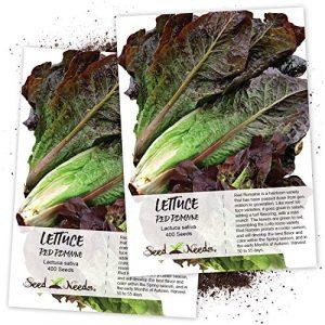 Seed Needs  1 Seed Needs