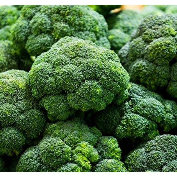 Isla's Garden Seeds Heirloom Seed 2 Broccoli Calabrese Sprouting Seeds, 1000+ Premium Heirloom Seeds, Excellent for Home Garden! (Isla's Garden Seeds), Non GMO, 85% Germination Rates, Seeds