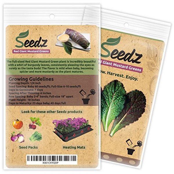 Seedz Organic Seed 3 Organic Mustard Seeds (APPR. 550) Red Giant Mustard Greens - Heirloom Vegetable Seeds - Certified Organic, Non-GMO, Non Hybrid - USA