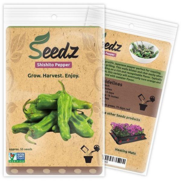 Seedz Organic Seed 1 Organic Pepper Seeds, APPR. 55, Shishito Pepper, Heirloom Vegetable Seeds, Certified Organic, Non GMO, Non Hybrid, USA