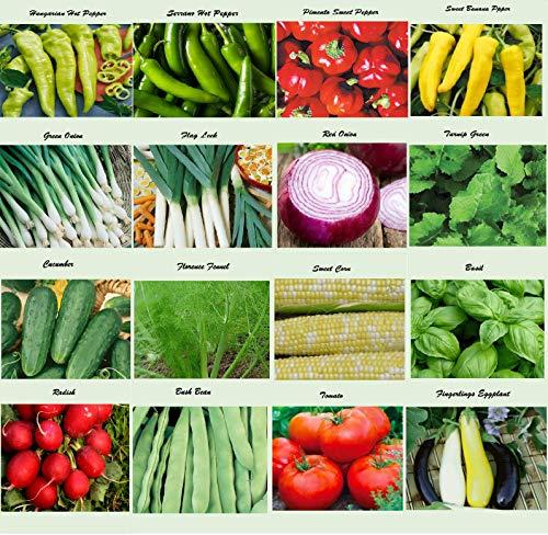 Apexmode  1 Set of 16 Assorted Organic Vegetable & Herb Seeds 16 Varieties Create a Deluxe Garden All Seeds are Heirloom