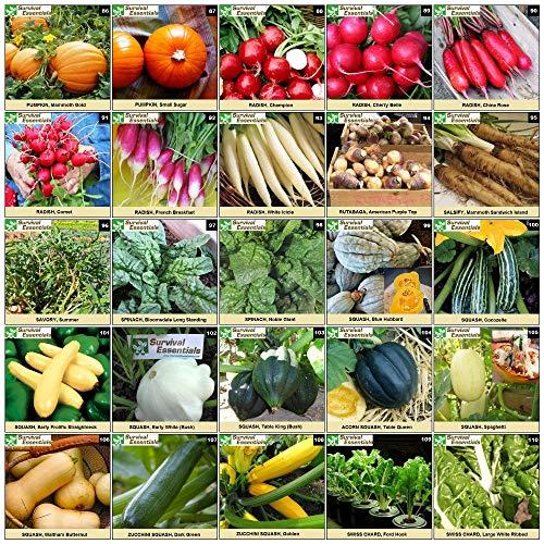Survival Essentials  4 Survival Essentials 144 Variety Ultimate Heirloom Seed Vault for Survival and Preparedness - 23