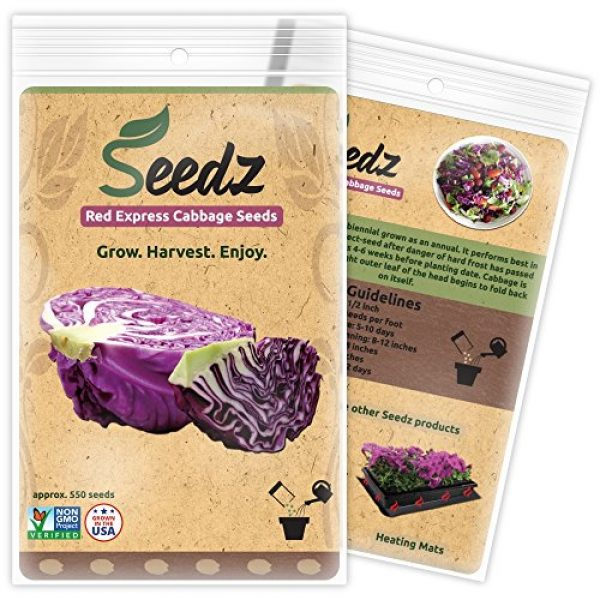 Seedz Organic Seed 1 Organic Cabbage Seeds, APPR. 550, Red Express Cabbage, Heirloom Vegetable Seeds, Certified Organic, Non GMO, Non Hybrid, USA