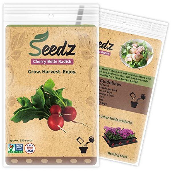 Seedz Organic Seed 1 Organic Radish Seeds, APPR. 550, Radish Planting Seeds, Heirloom Vegetable Seeds, Certified Organic, Non GMO, Non Hybrid, USA