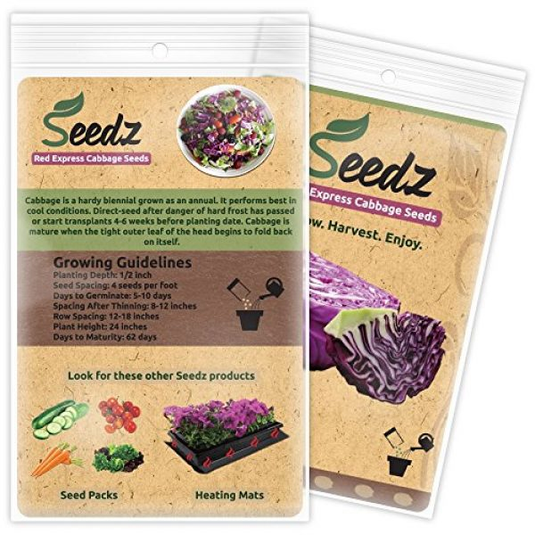 Seedz Organic Seed 3 Organic Cabbage Seeds, APPR. 550, Red Express Cabbage, Heirloom Vegetable Seeds, Certified Organic, Non GMO, Non Hybrid, USA
