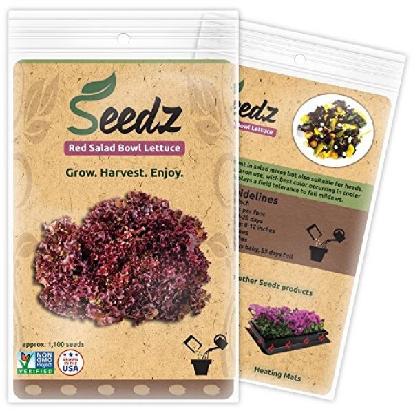 Seedz Organic Seed 1 Organic Lettuce Seeds, APPR. 1,100, Red Salad Bowl Lettuce Heirloom Vegetable Seeds, Certified Organic, Non GMO, Non Hybrid, USA