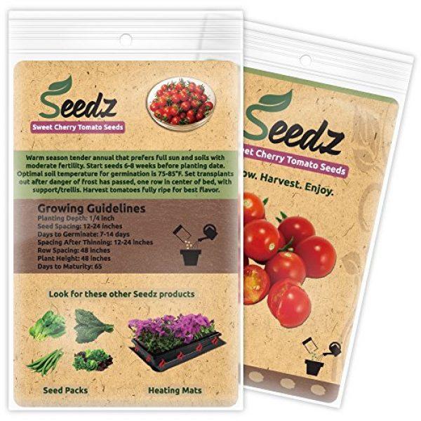 Seedz Organic Seed 3 Organic Tomato Seeds, APPR. 75, Sweet Cherry Tomato, Vegetable Seeds, Certified Organic, Non GMO, Non Hybrid, USA